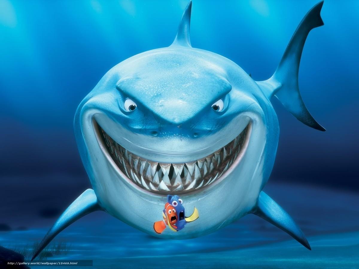 """下载壁纸 """"海底总动员"""", 鲨鱼 免费为您的桌面分辨率的壁纸 1600x1200"""