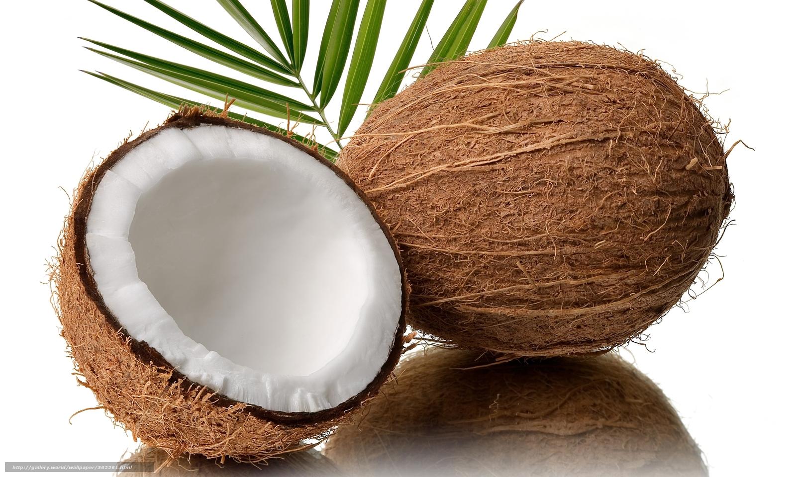 Le before de l'été pour préparer sa peau... 362261_kokos_orex_belyj-fon_5000x3000_www.Gde-Fon.com