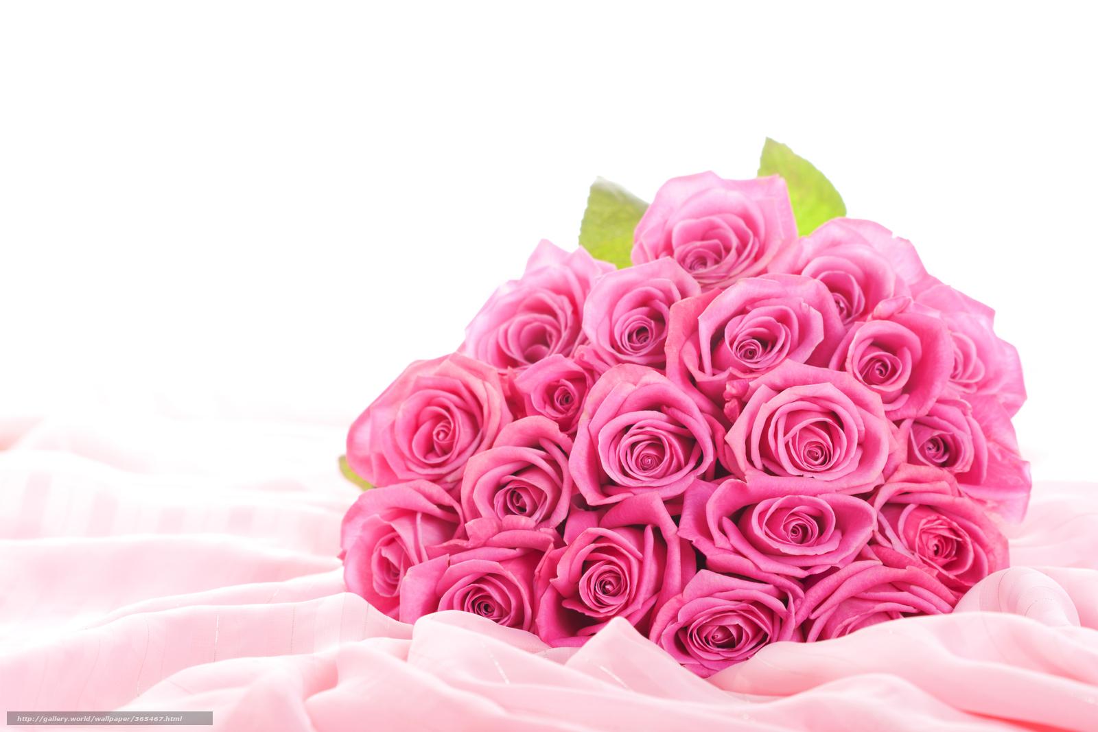 обои цветы скачать бесплатно:
