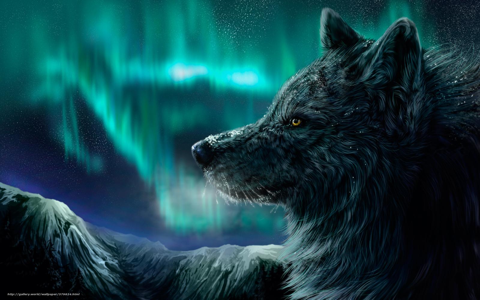 Scaricare gli sfondi lupo aurora boreale notte montagne for Sfondi desktop aurora boreale
