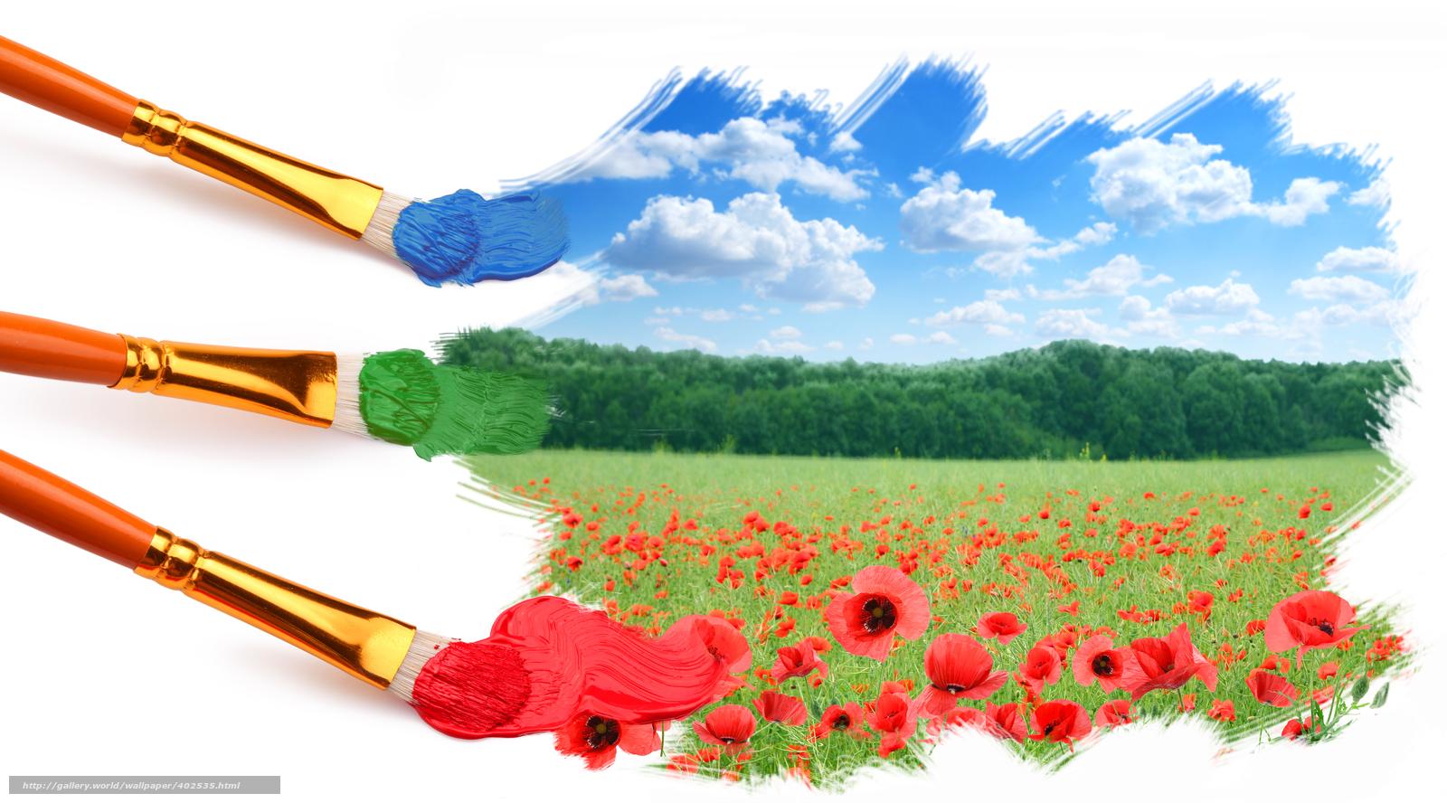 Скачать обои кисти краски небо трава