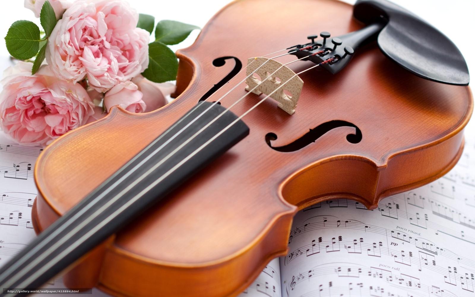 Tlcharger fond d 39 ecran violon instrument de musique roses fleurs fonds d 39 ecran gratuits pour - Photo d instrument de musique ...