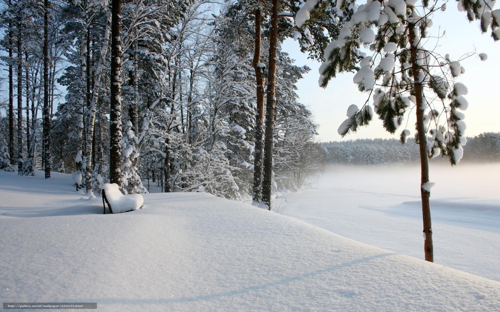 Стихи о зиме русских поэтов 23 класс
