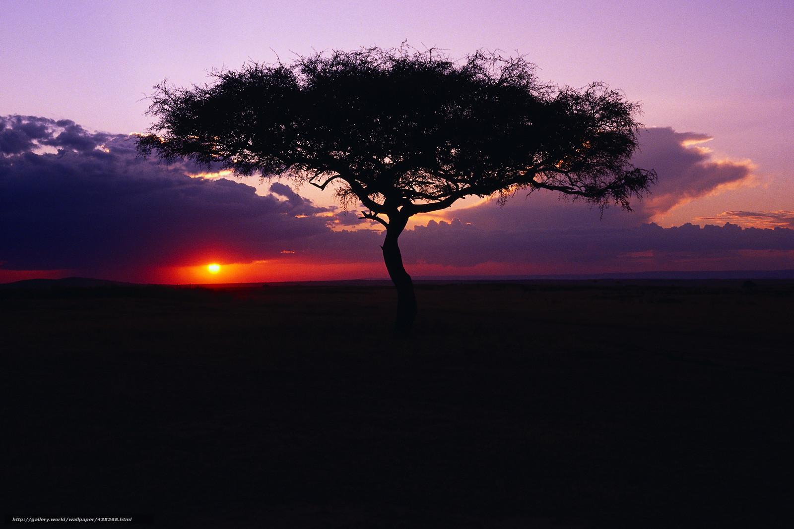 Путешествие по пустыне Сахара  ФОТО НОВОСТИ