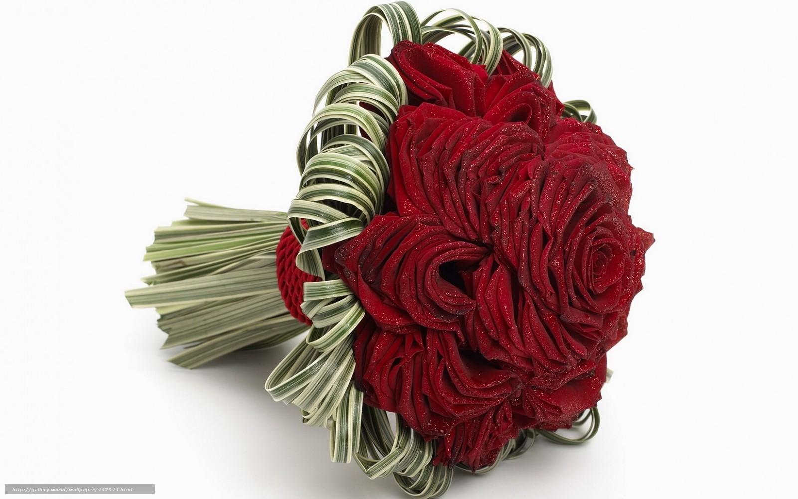 скачать красивые цветы фото: