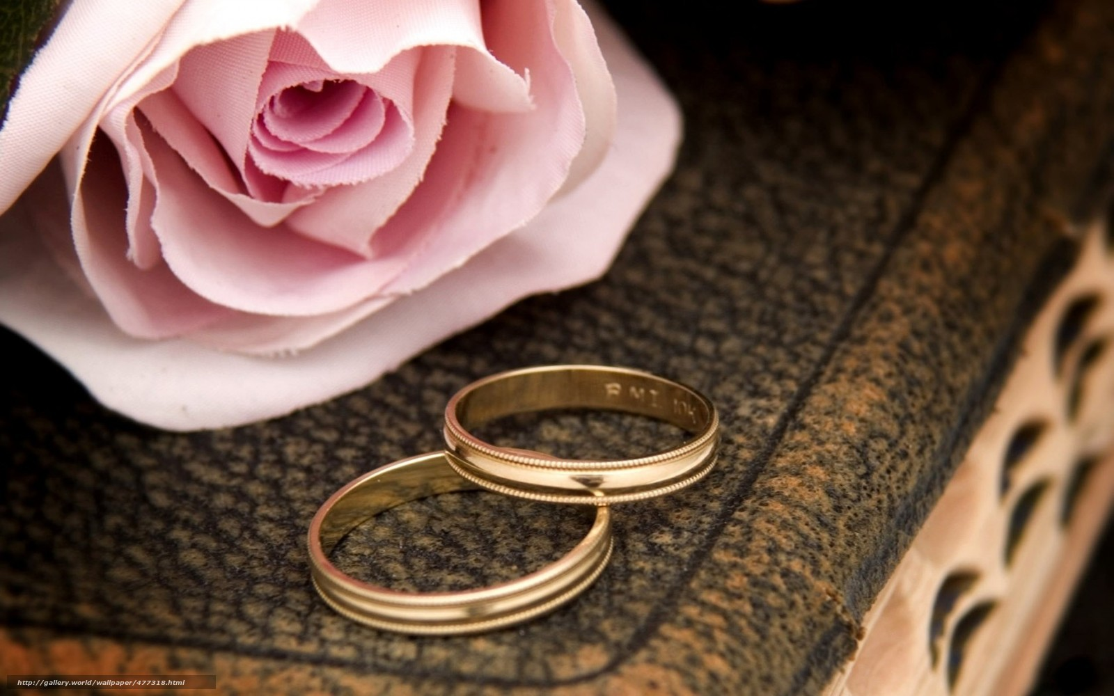 Роза кольца свадьба праздник макро