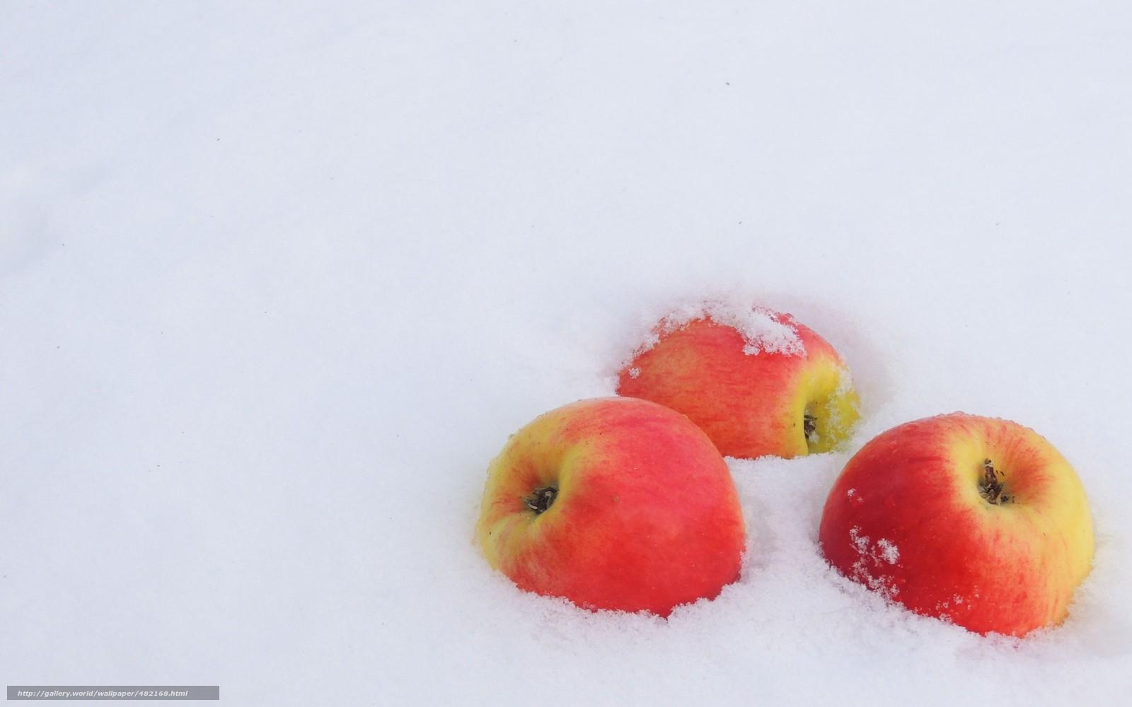 Для рабочего стола зима снег яблоки