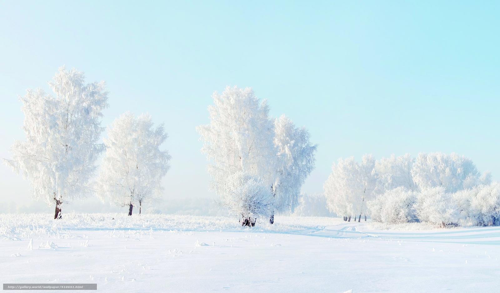 картинка мороз