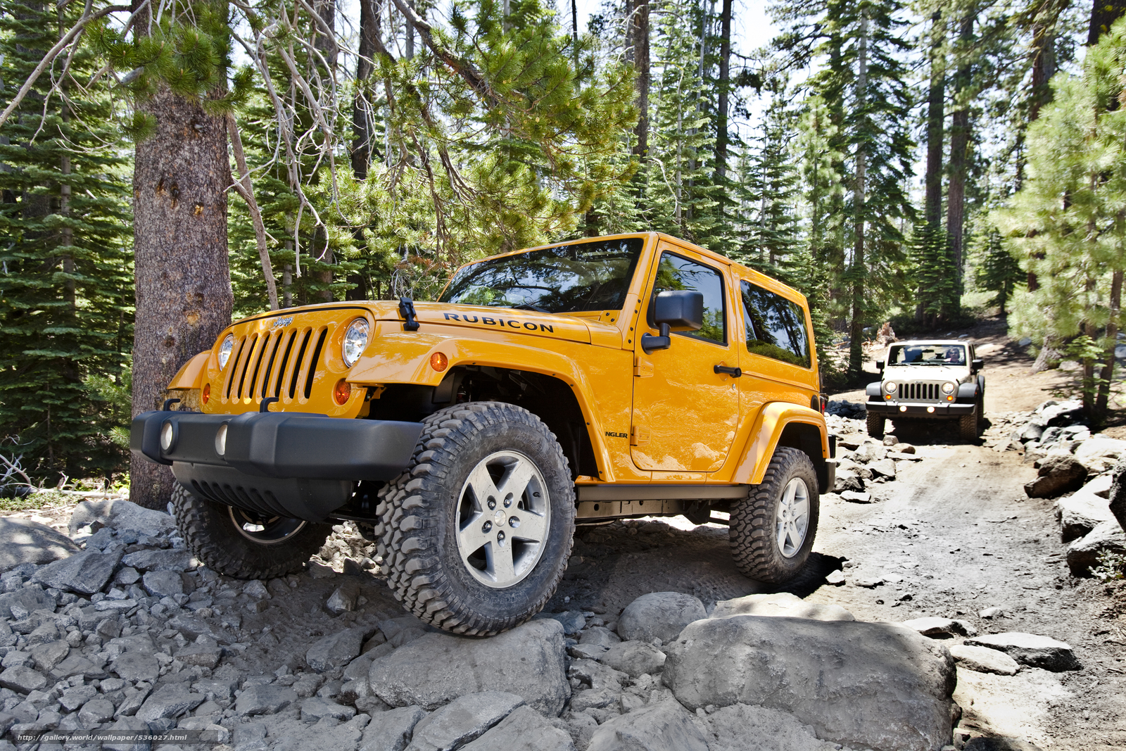Jeep, Wrangler, Rubicon.