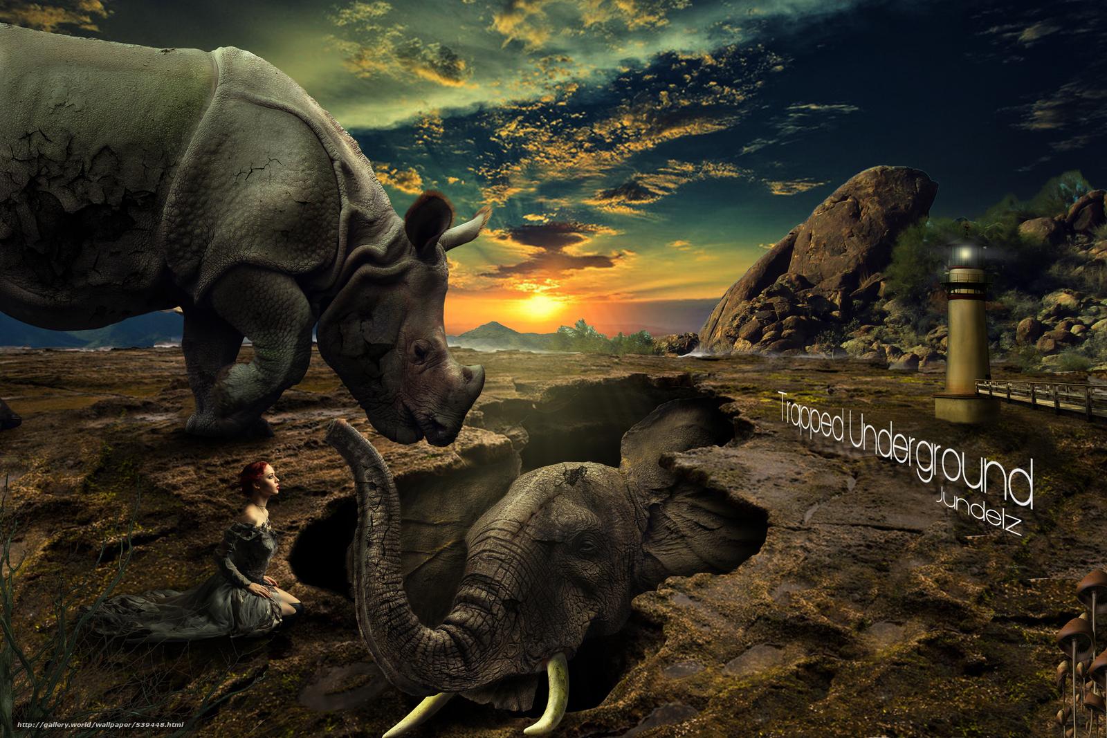 Фотообои носорог, бесплатные фото ...: pictures11.ru/fotooboi-nosorog.html
