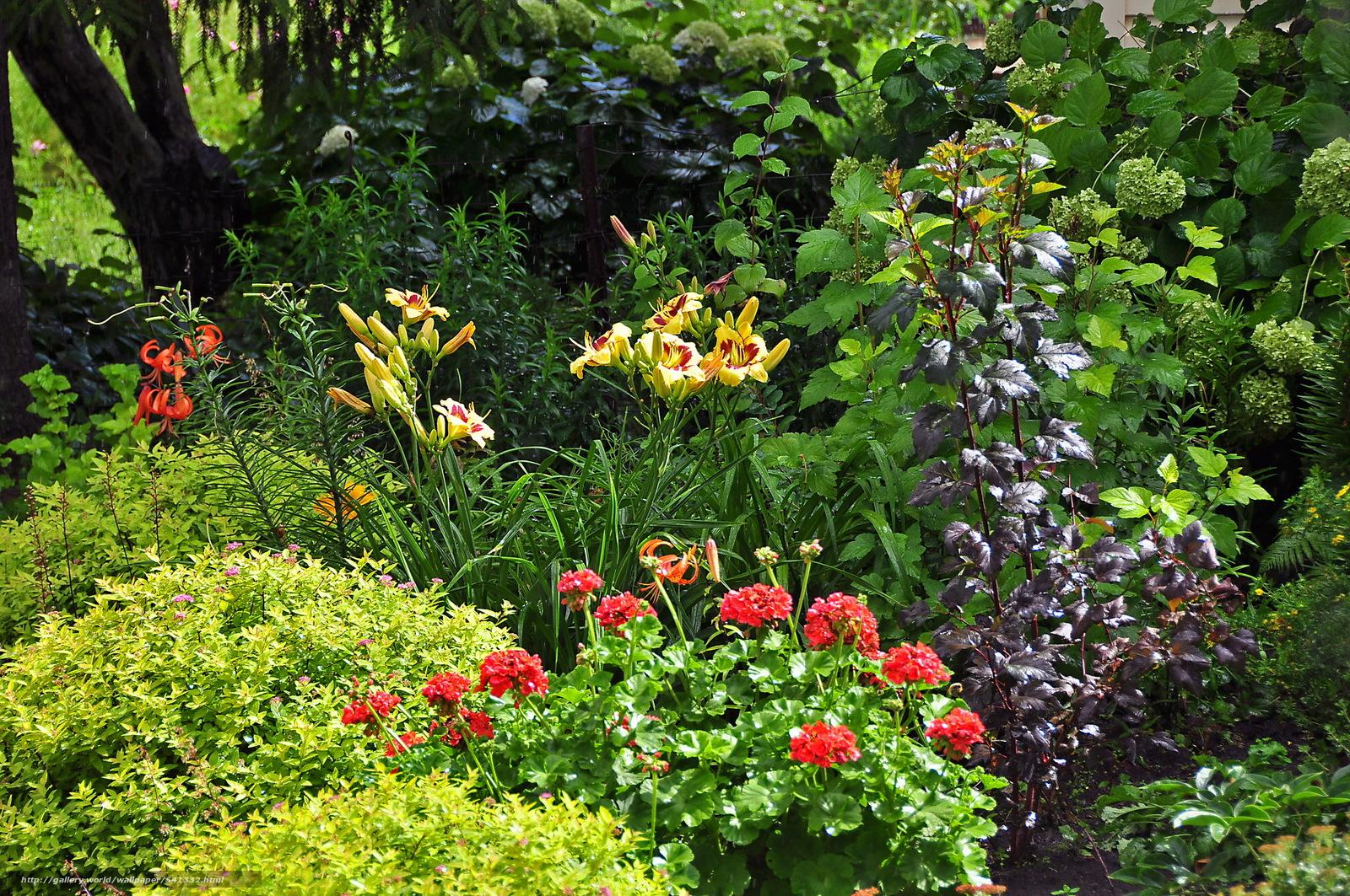 Скачать обои сад деревья цветы