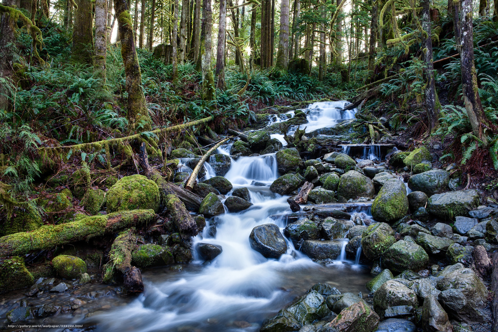 Download Wallpaper Seattle Washington Wallace Falls