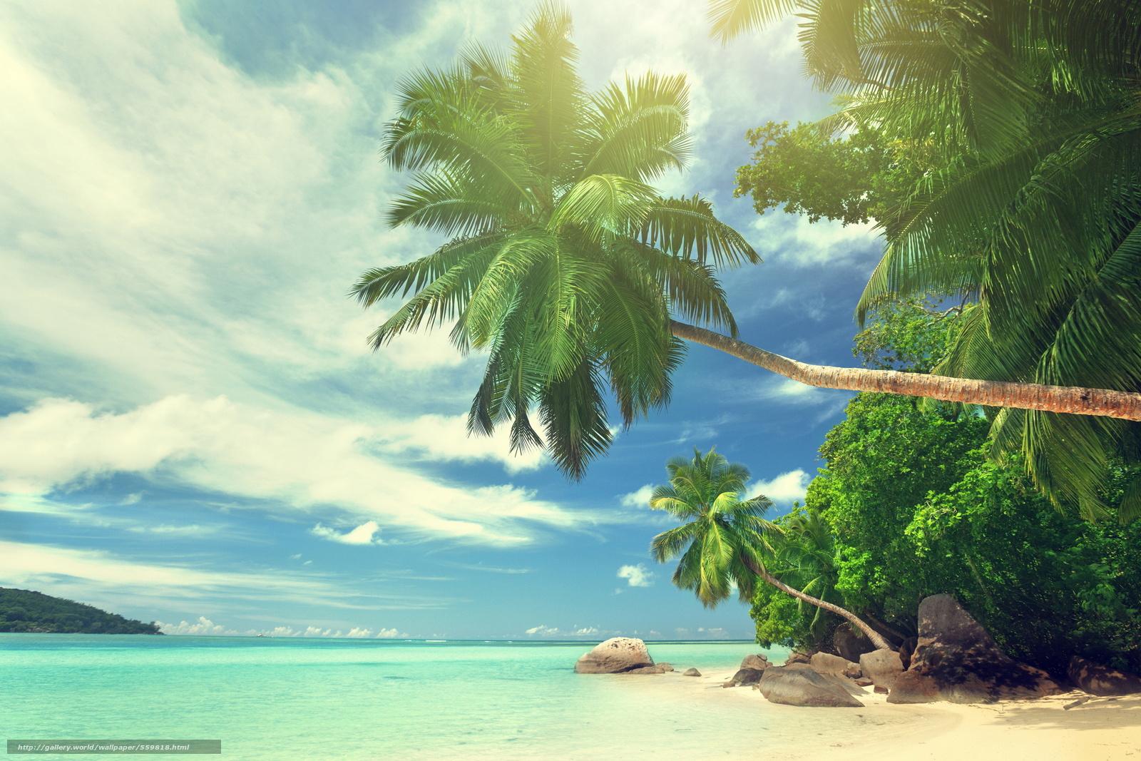 ocean landscapes beach paradise - photo #23