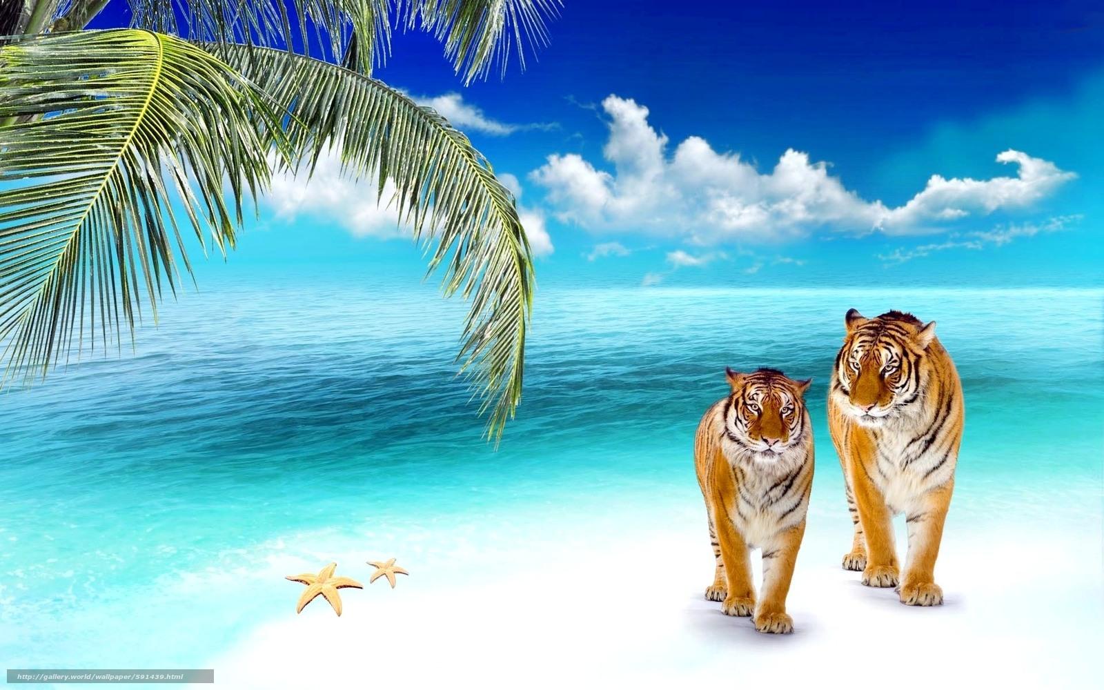 Купить фотообои море пляж пальмы на стену недорого в СПб