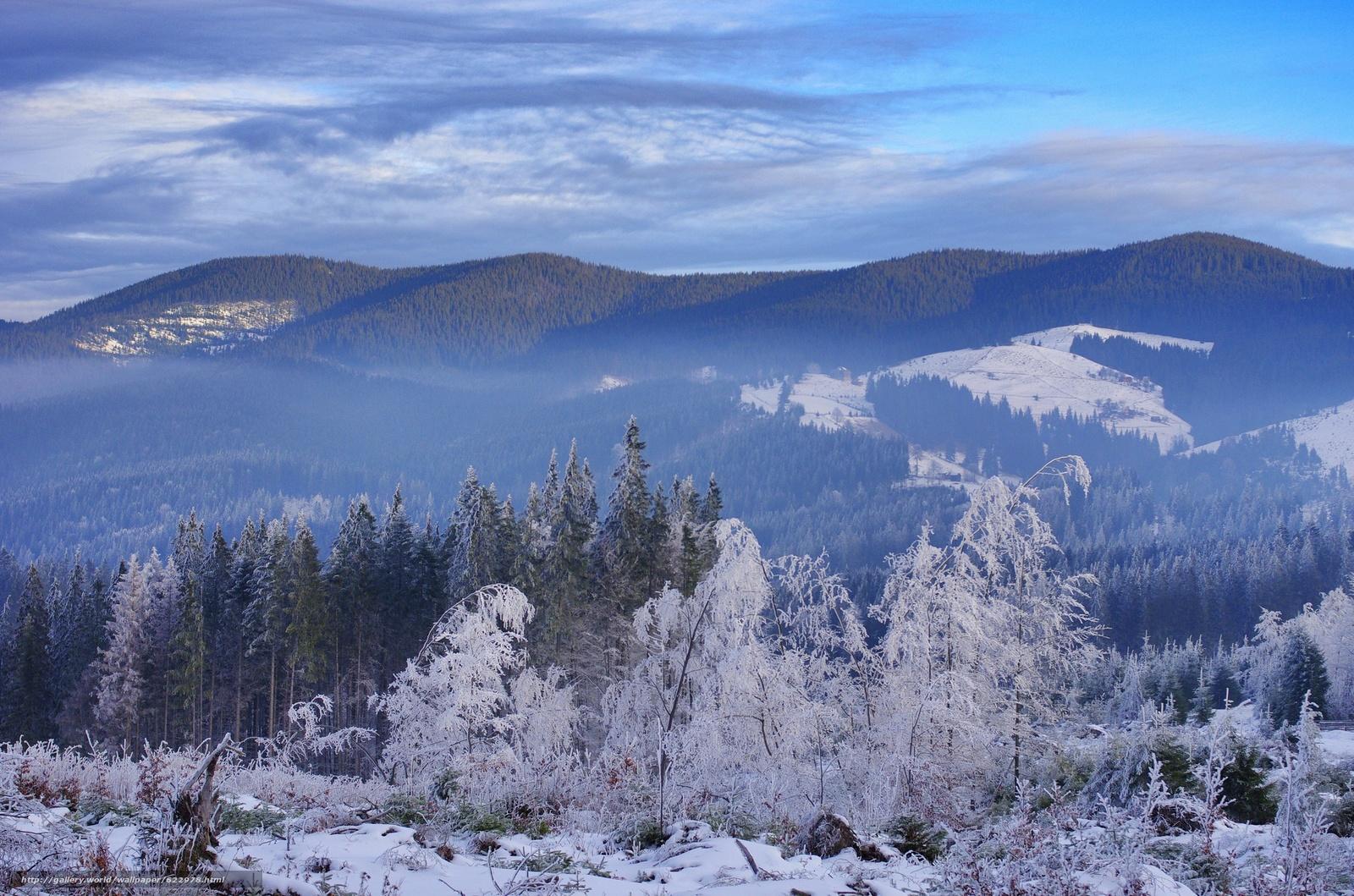 下载壁纸 冬天, 雪, 森林, 山 免费为您的桌面分辨率的壁纸 2048x1356