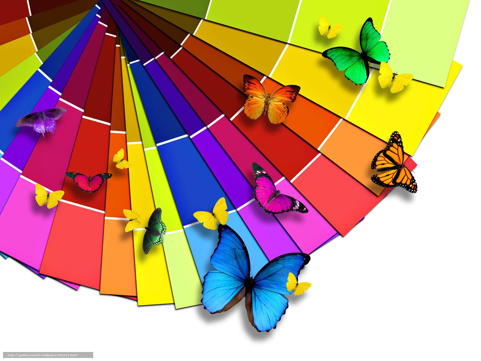 Обои абстракции веер бабочки радуга
