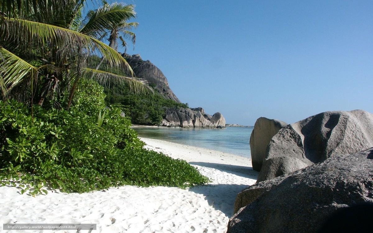 тропический пляж, песок, море, камни, тростник