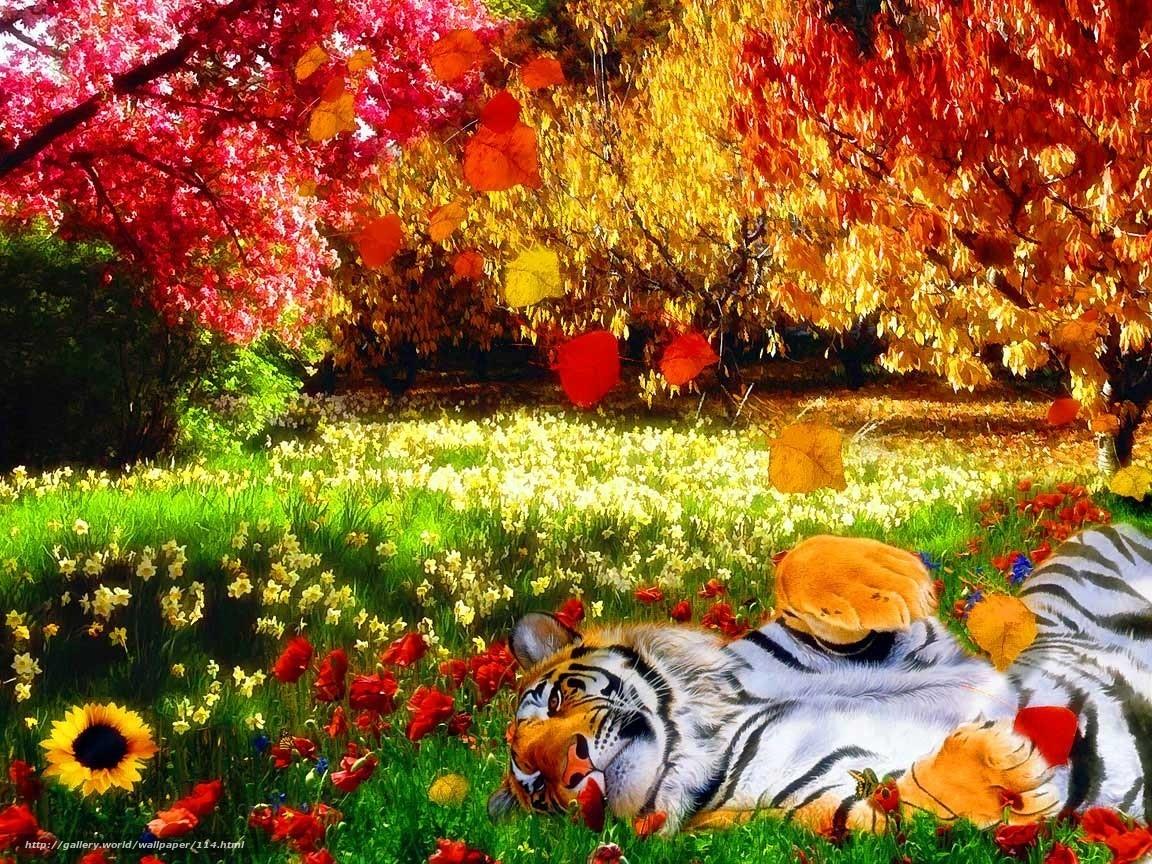 тигр, природа, яркие краски, тепло, цветы, деревья, листья, трава