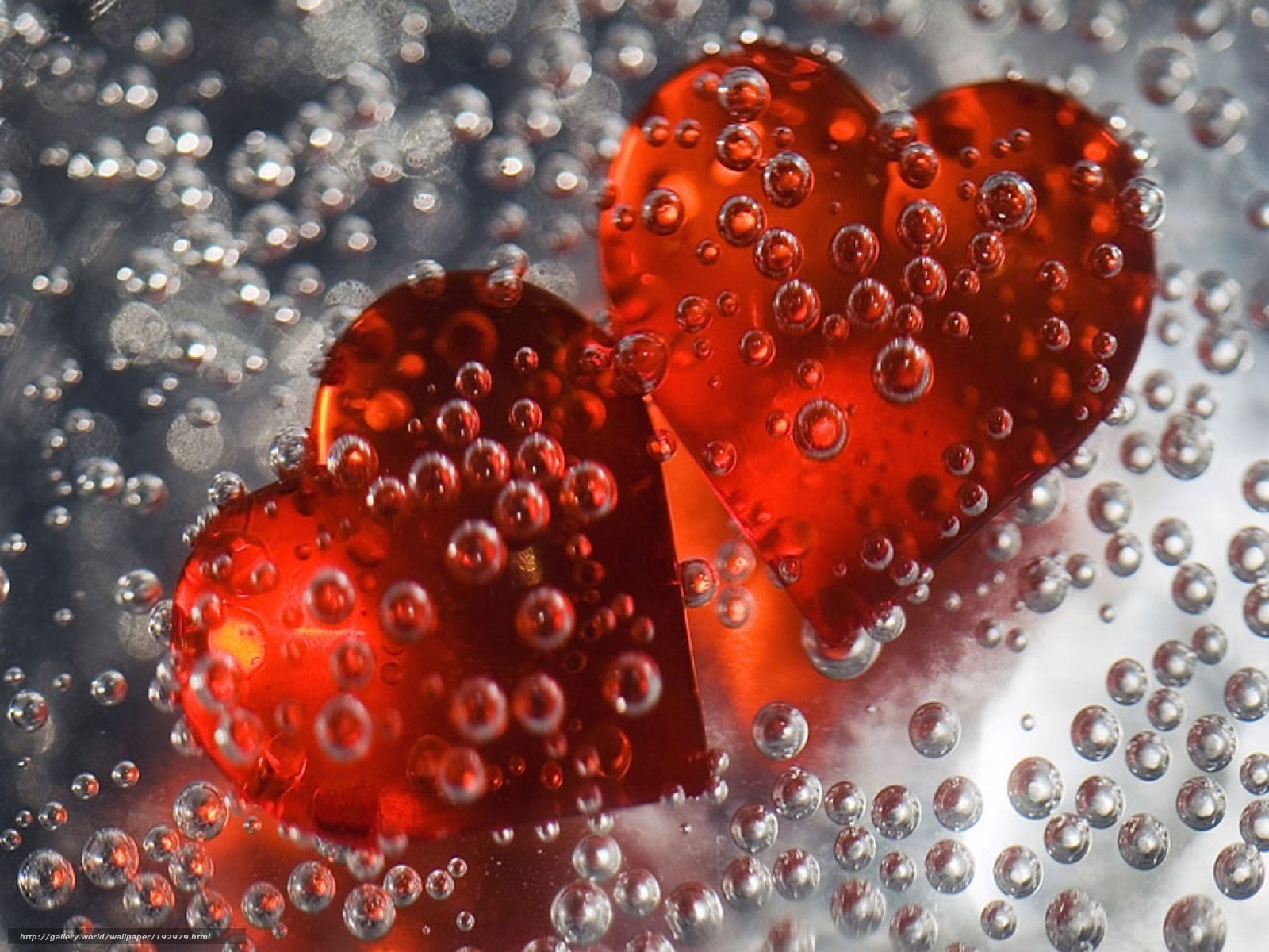 Фото о любви 13 фотография