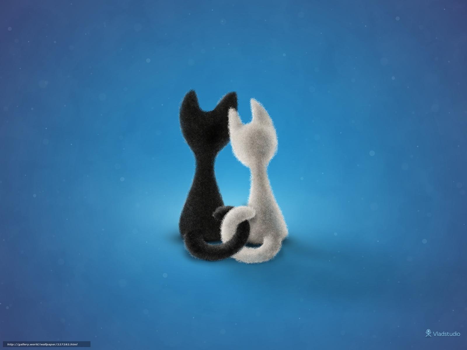 картинки с кошками про любовь: