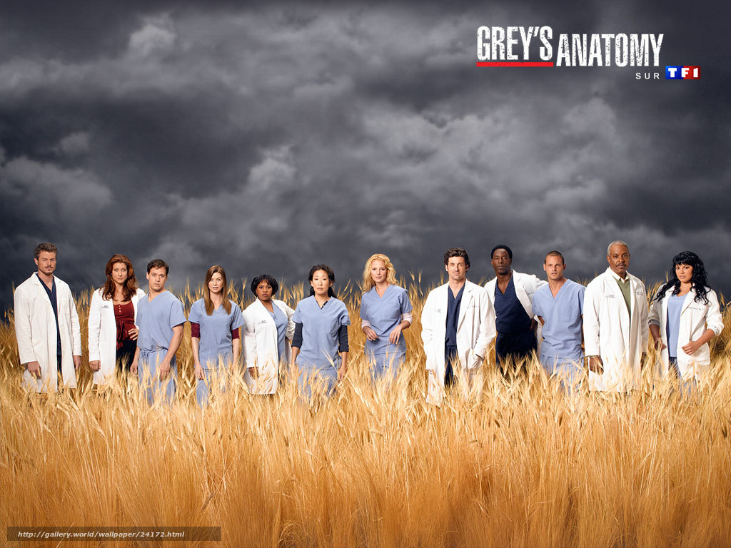 a short review of greys anatomy an american drama series Jerrika hinton joined the cast of this season's grey's anatomy, playing new intern stephanie, in what will be a recurring role during the series' 9th season on abc.