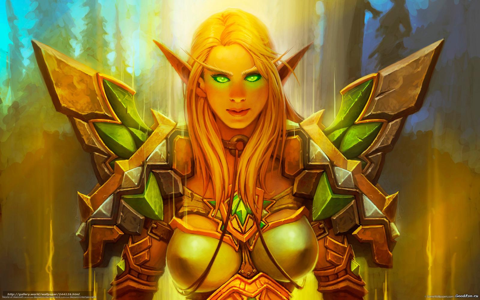 Elf paladin world of warcraft erotic gallery