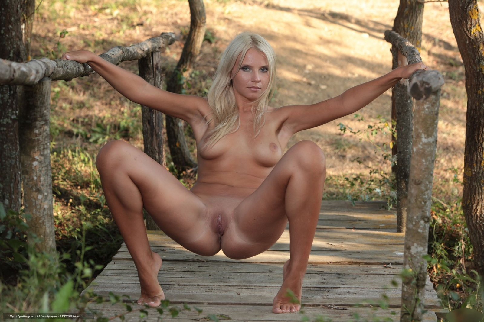 Эротические голые блондинки 9 фотография