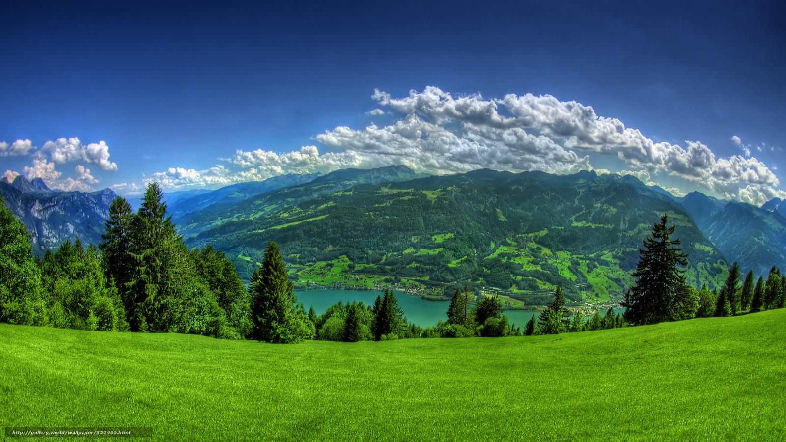Гори зелень