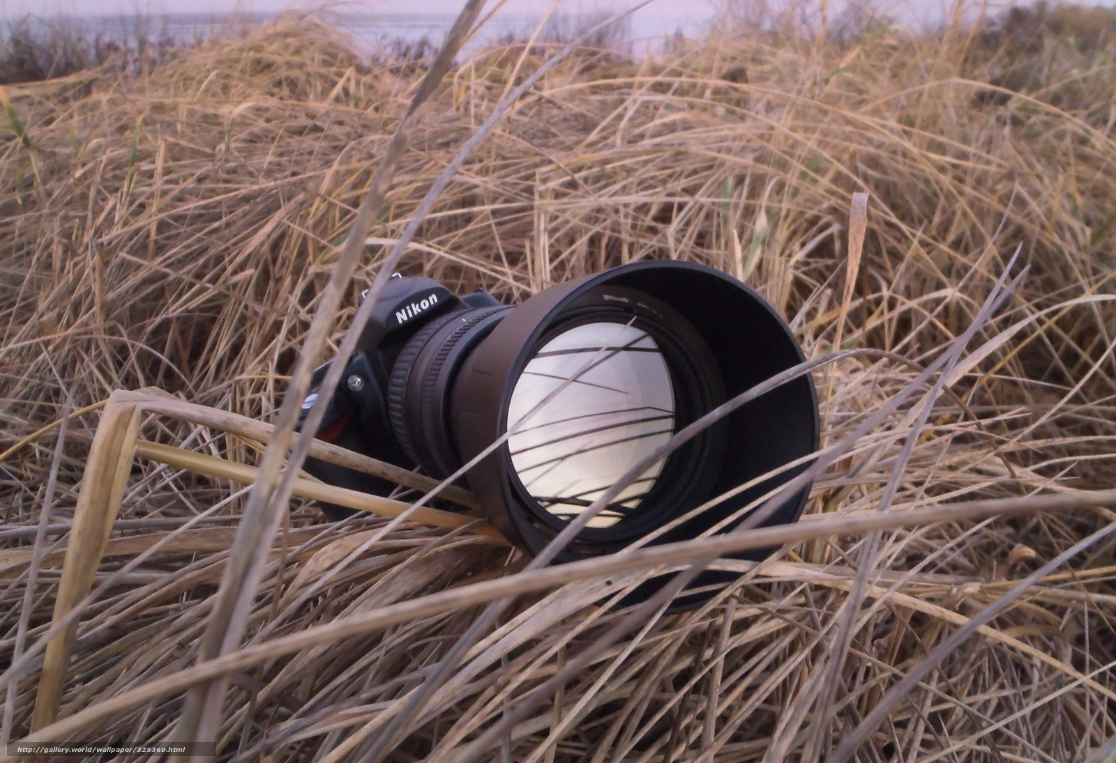 Фото из найденного фотоаппарата 10 фотография