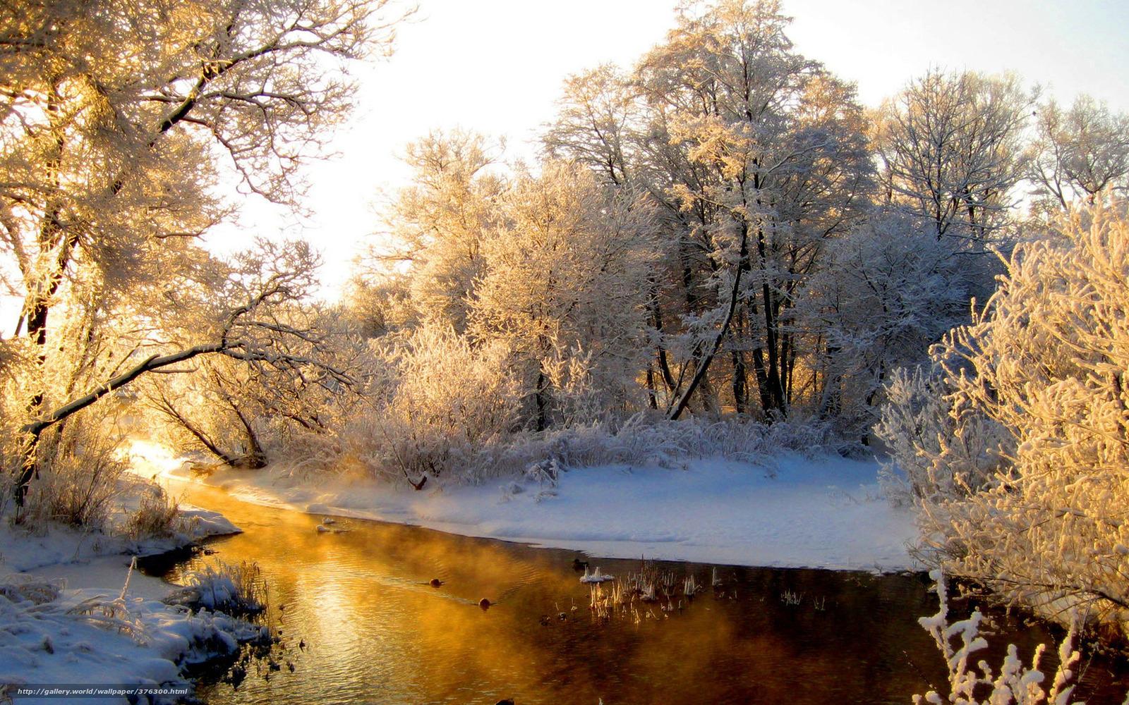 Утро мороз