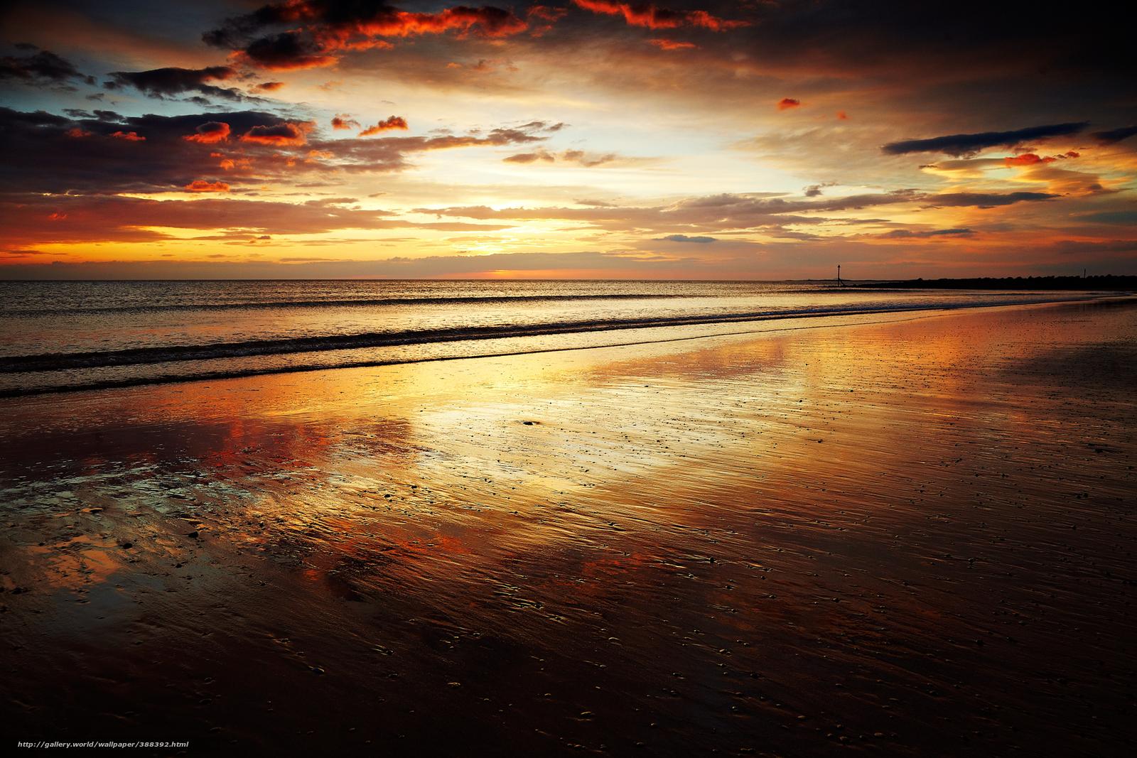 Asilomar State Beach  718 Photos amp 175 Reviews  Parks