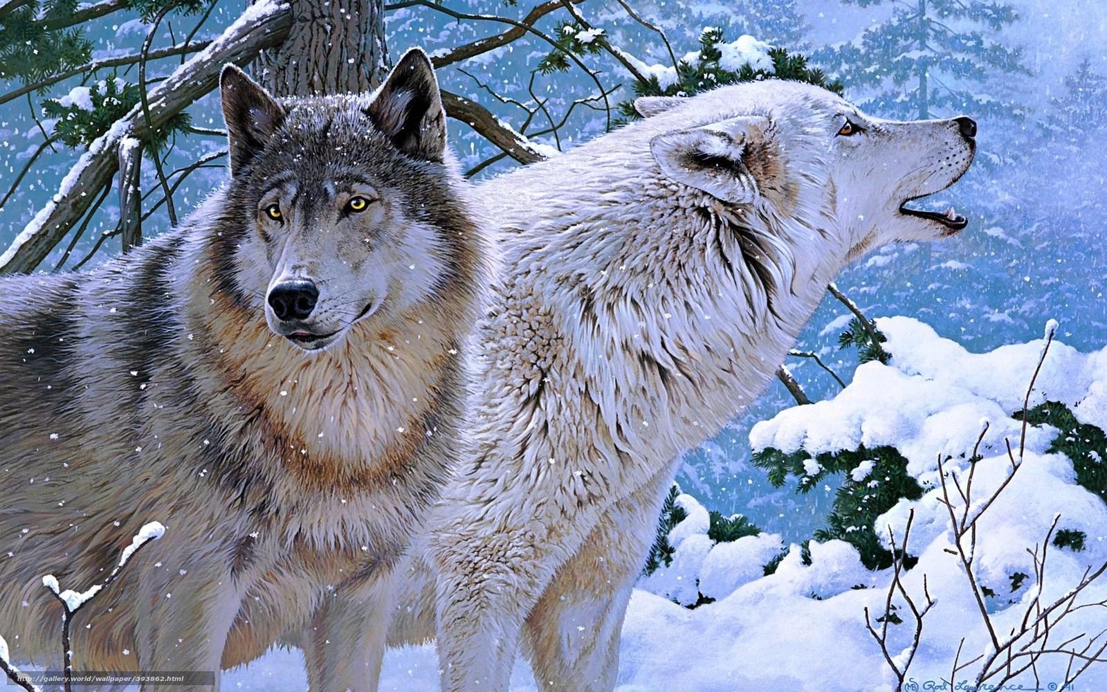 Картинка волки целуются - bb4