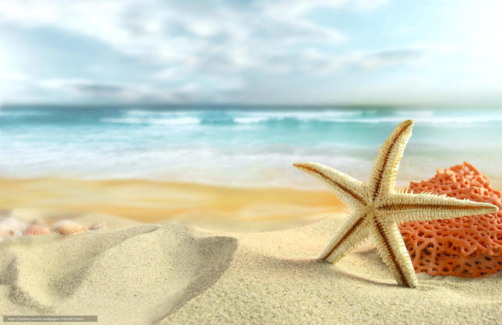 Лето природа небо облака море пляж
