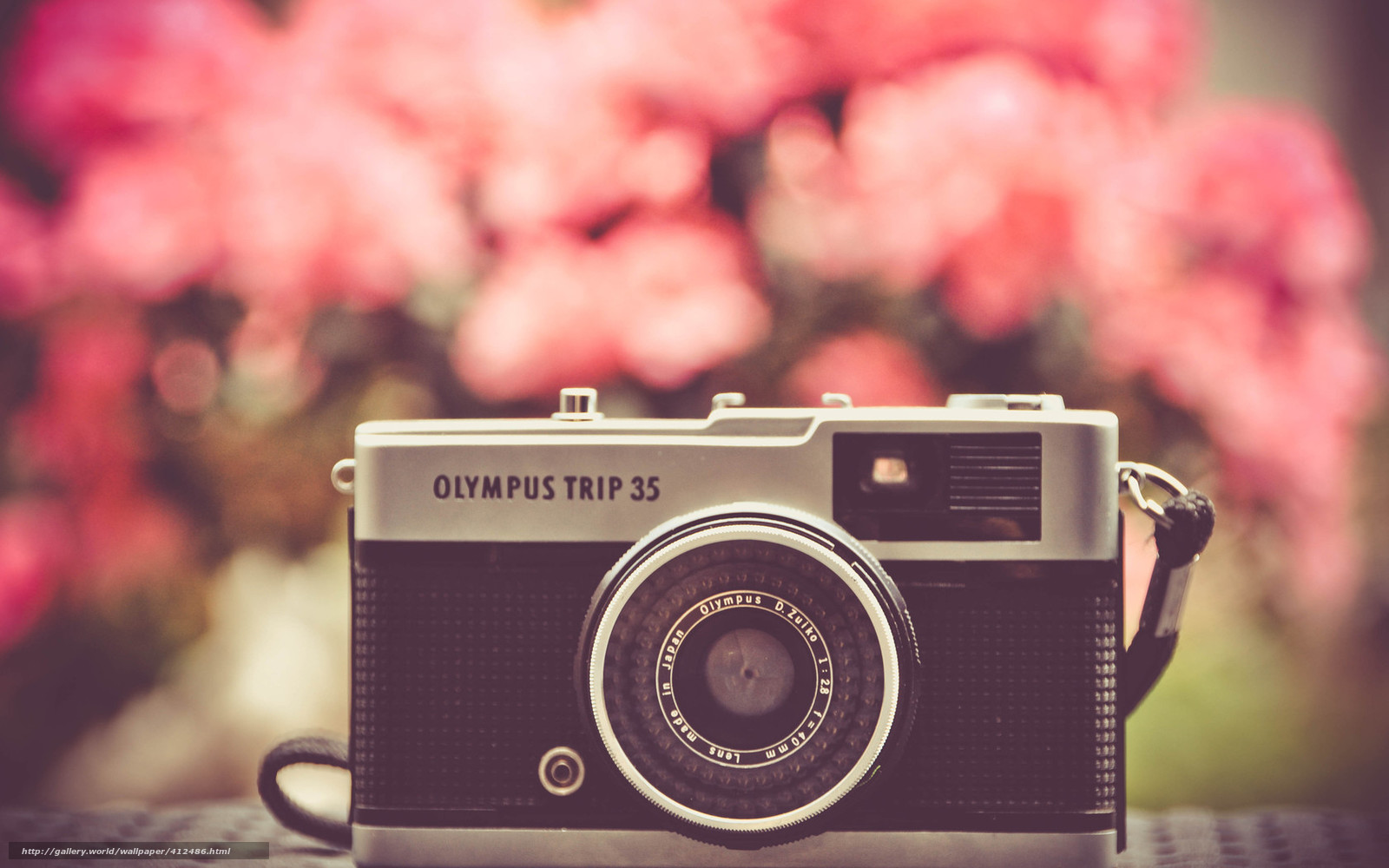 Фото из найденного фотоаппарата 14 фотография