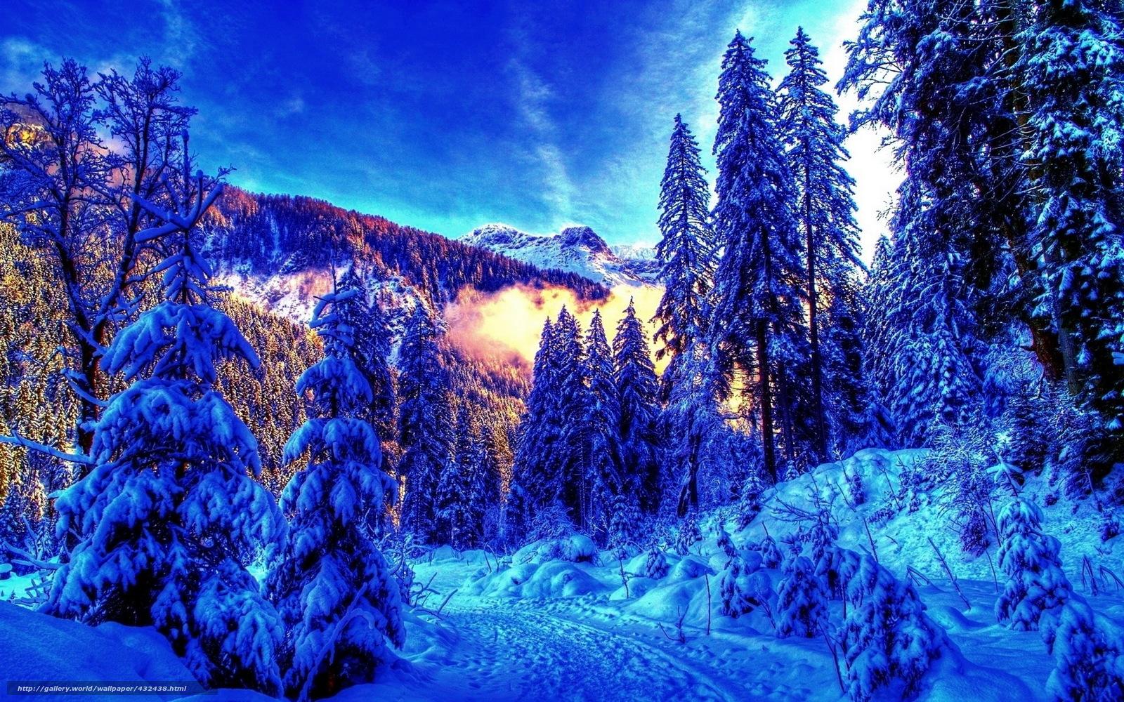 Обои для рабочего стола зима лес снег