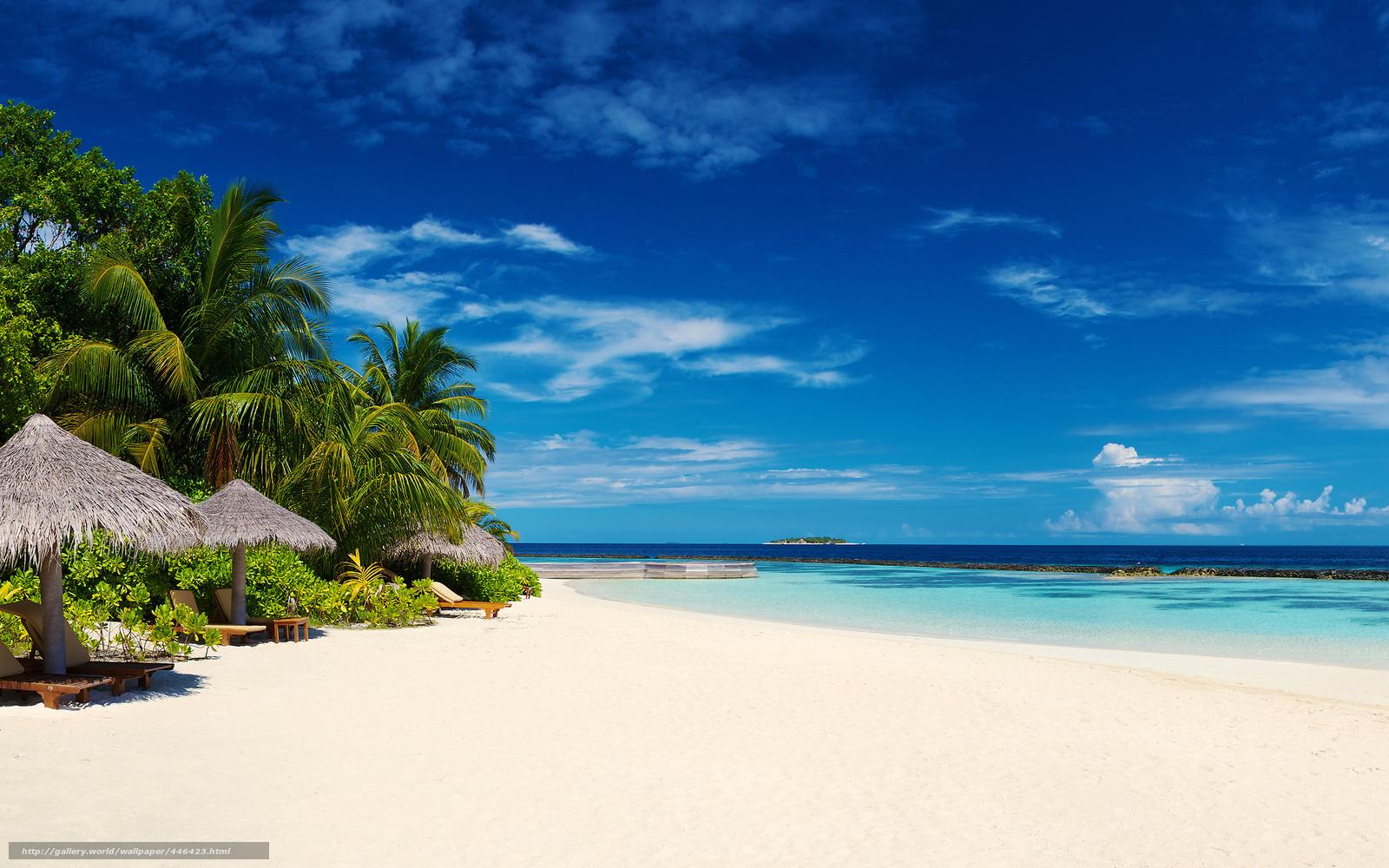 Океан солнце песок вода пляж
