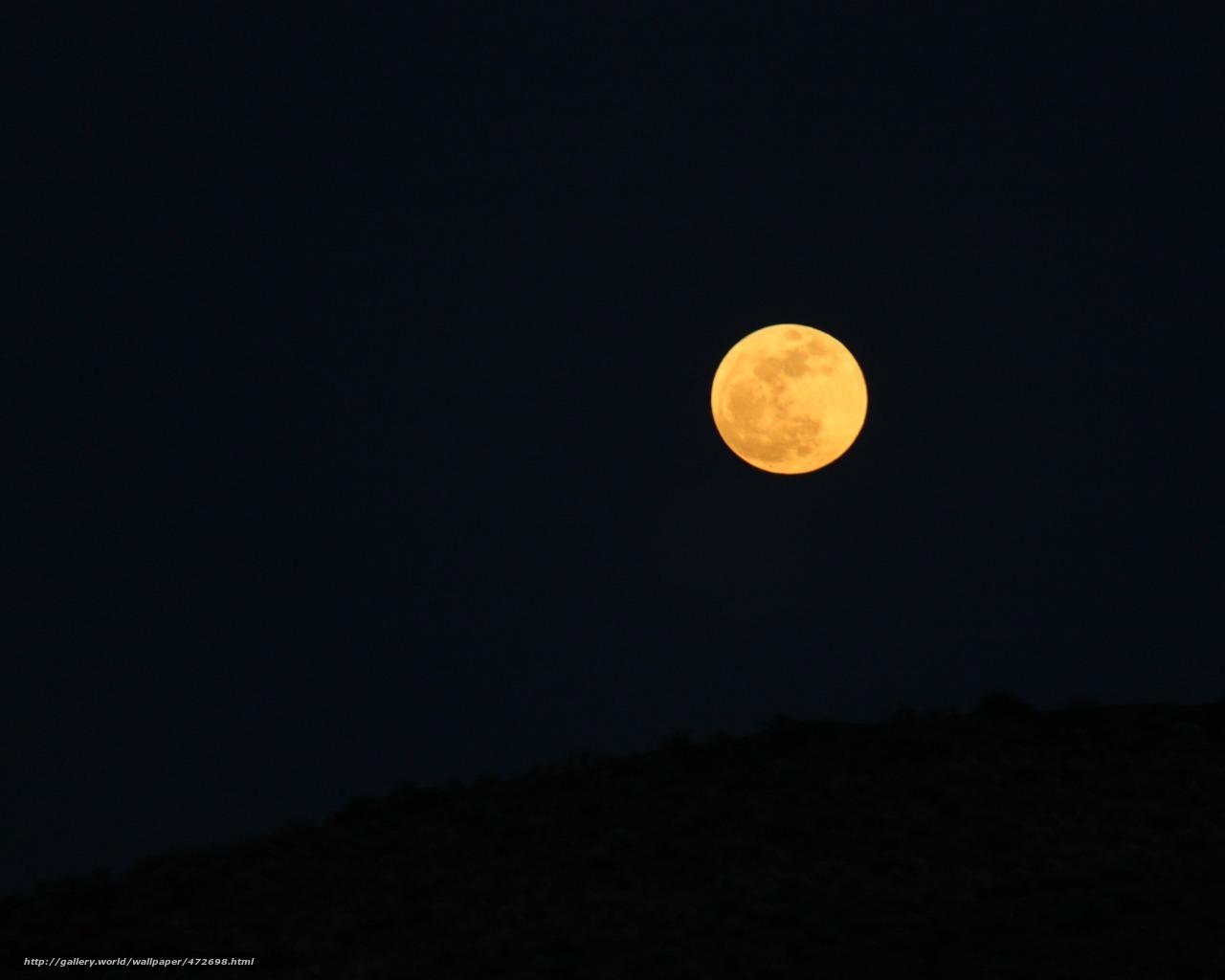 недорого трубу оранжевая луна к чему обоев Леруа