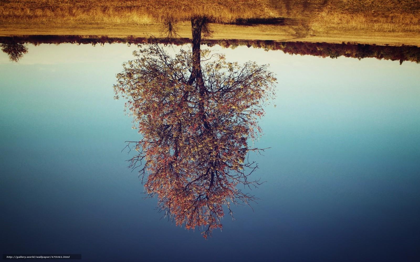 Фото прелестей вверх ногами 16 фотография