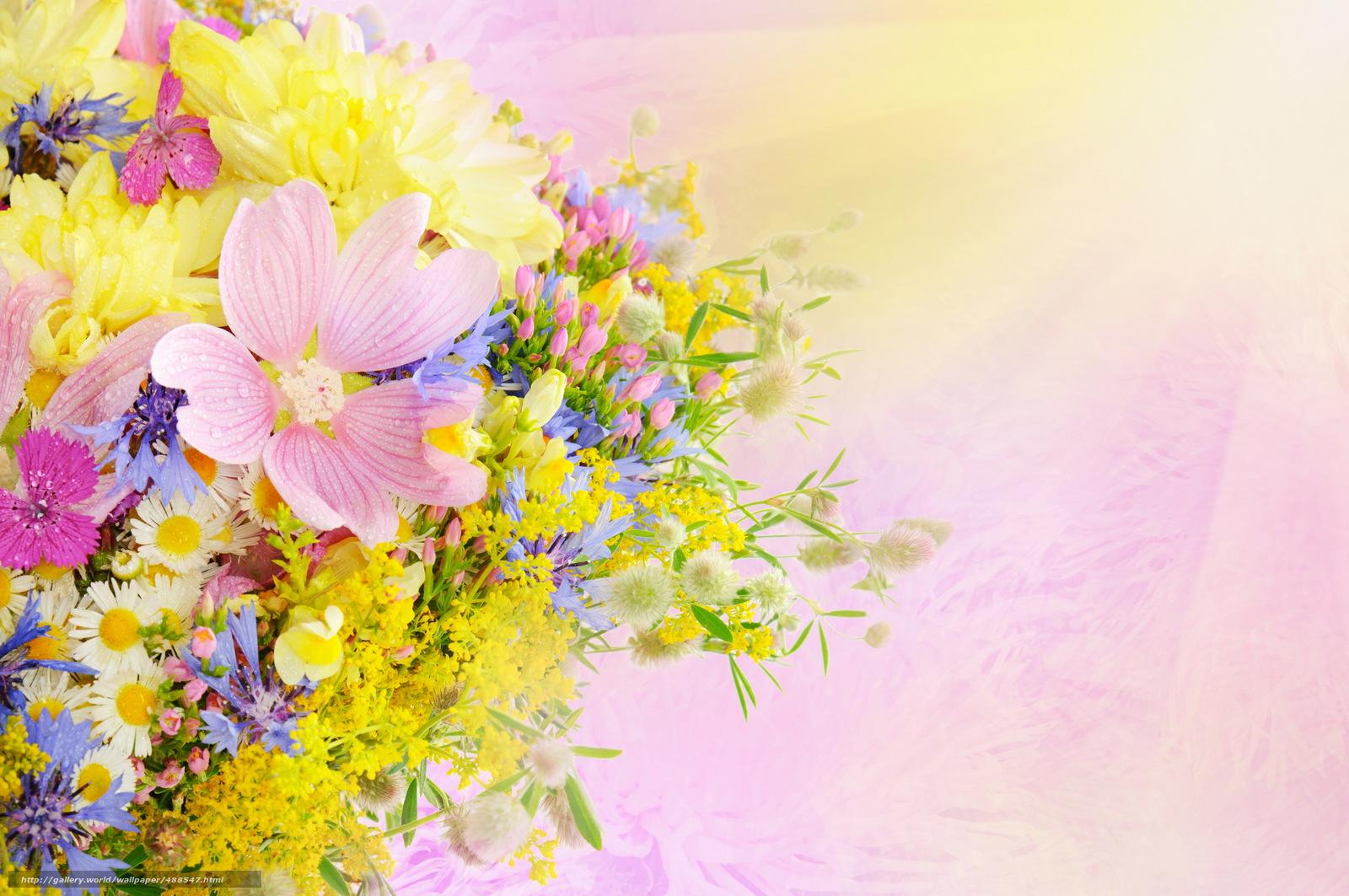 Рисунок цветов для поздравления