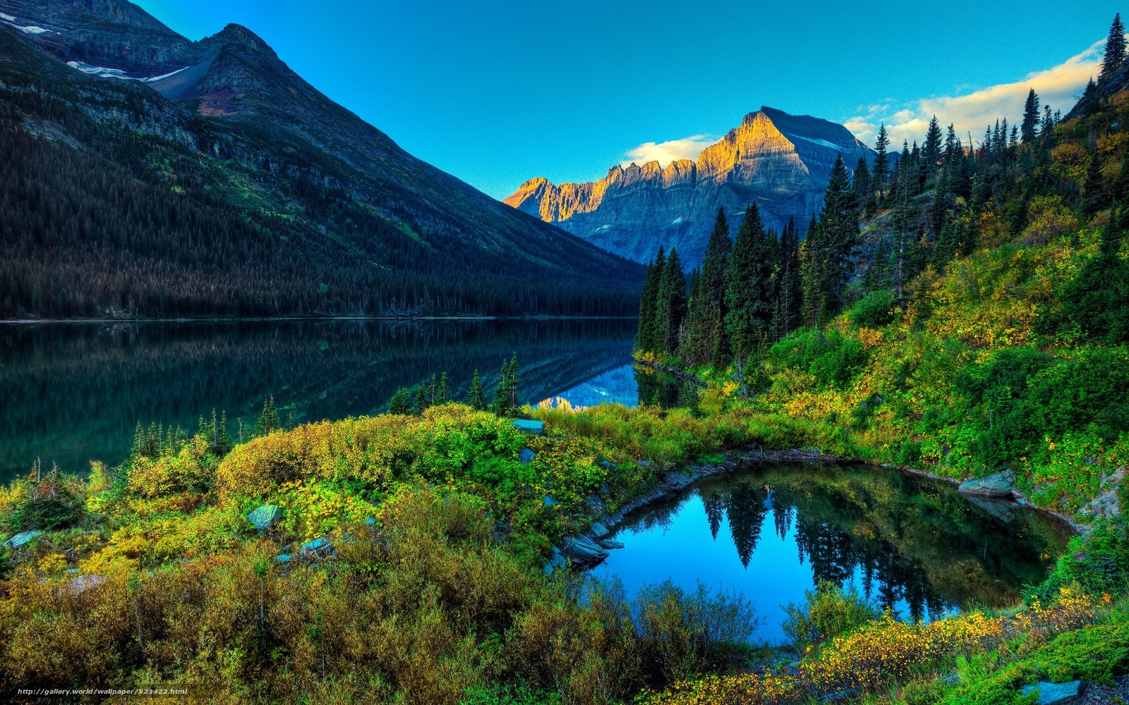 Озеро лес горы