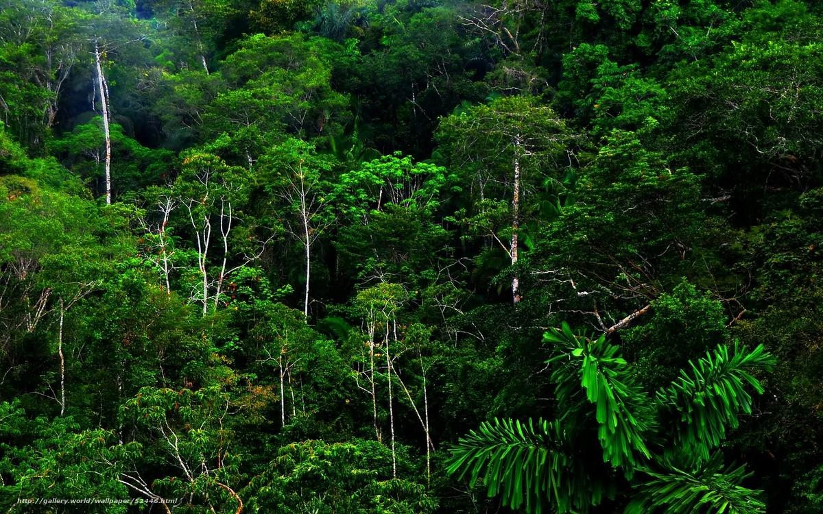 Смотреть порно kya tropik anal 7 фотография