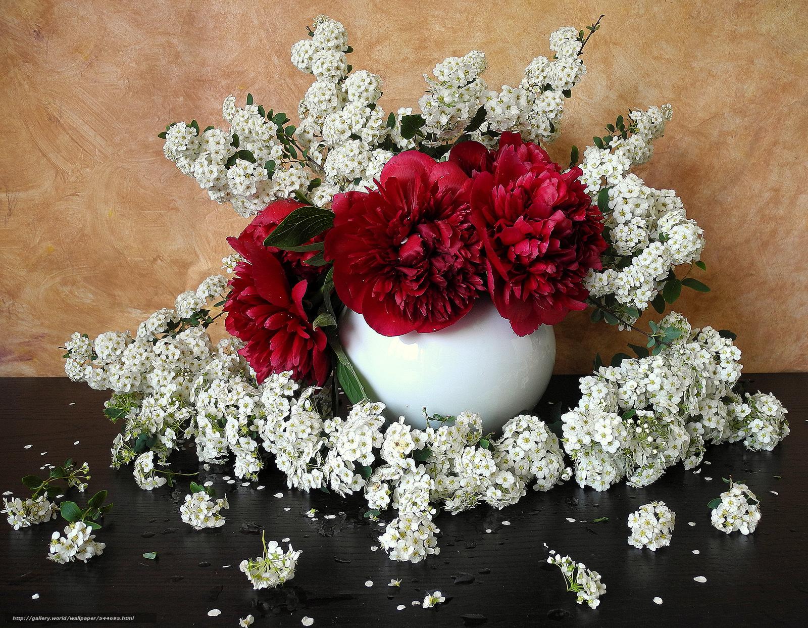 Цветы ваза натюрморт