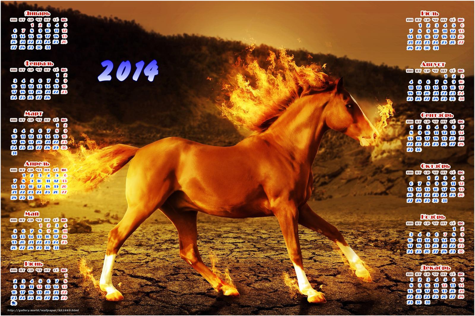 Картинки 2014, календарь, год лошади, обои для рабочего стола #552993