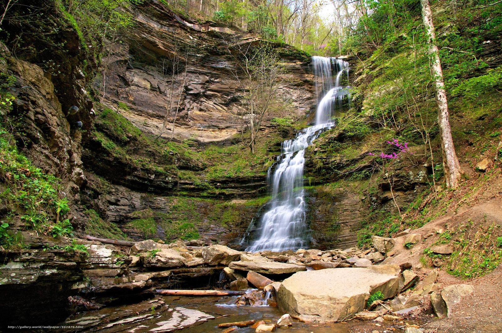 Водопад камни скалы деревья природа