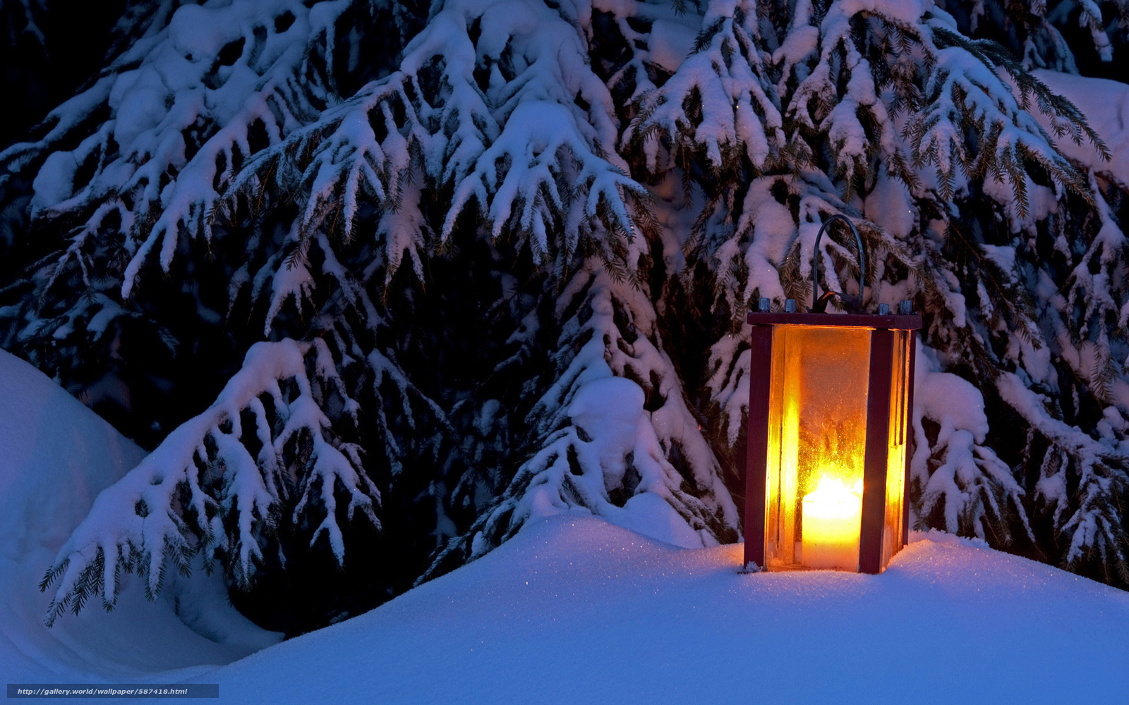 Winter005634vipics winter005634vipicsjpg