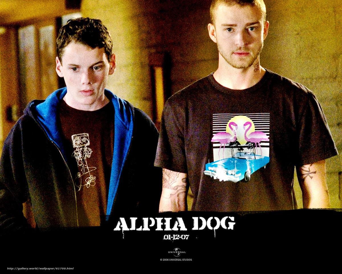 Семейные секреты alpha france 5 фотография