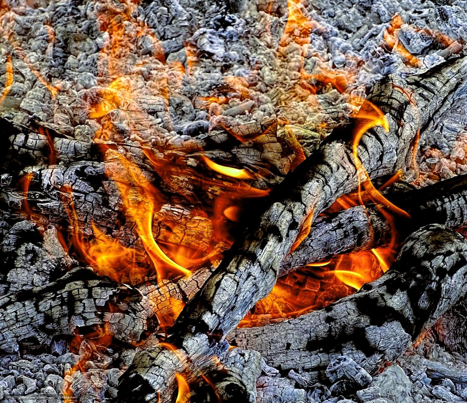 огонь, угли, костёр, пепел, зола, пламя