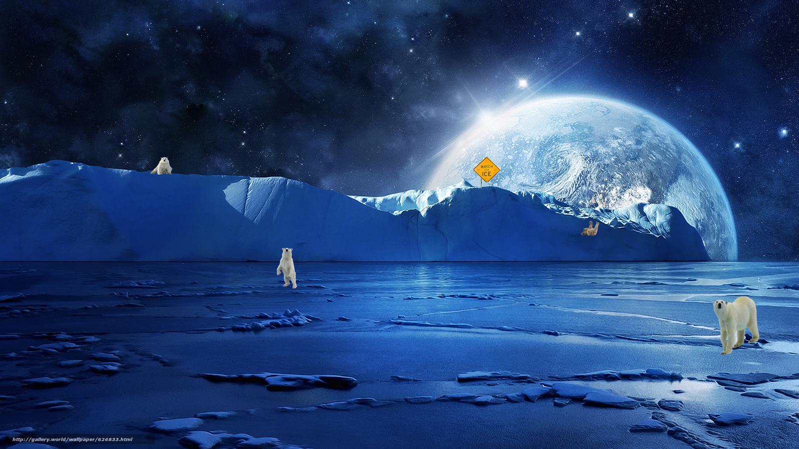 Картинки северный полюс