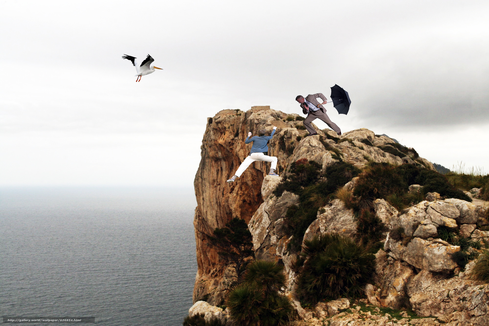 мужчины, скала, обрыв, пропасть