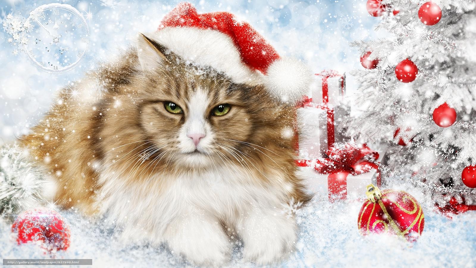 новый год, ёлка, кошка